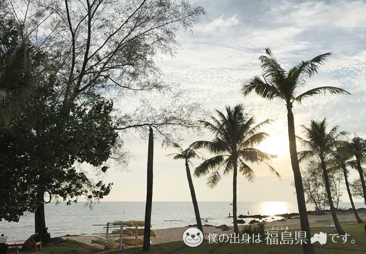 フーコック島のヤシの木と太陽
