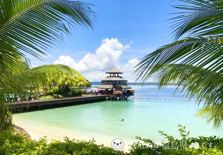ダバオ(サマル島)の海とヤシの木