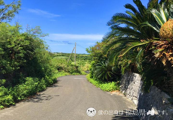 与論島の道